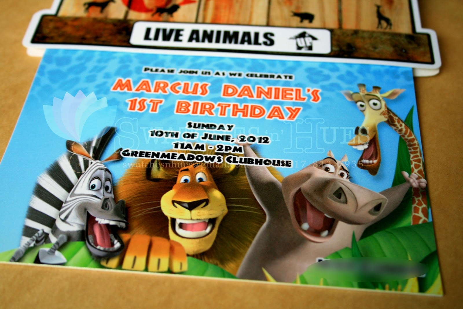Madagascar Party Invitations