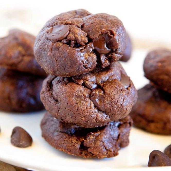 Chocolate Cookie Recipe Cocoa Powder