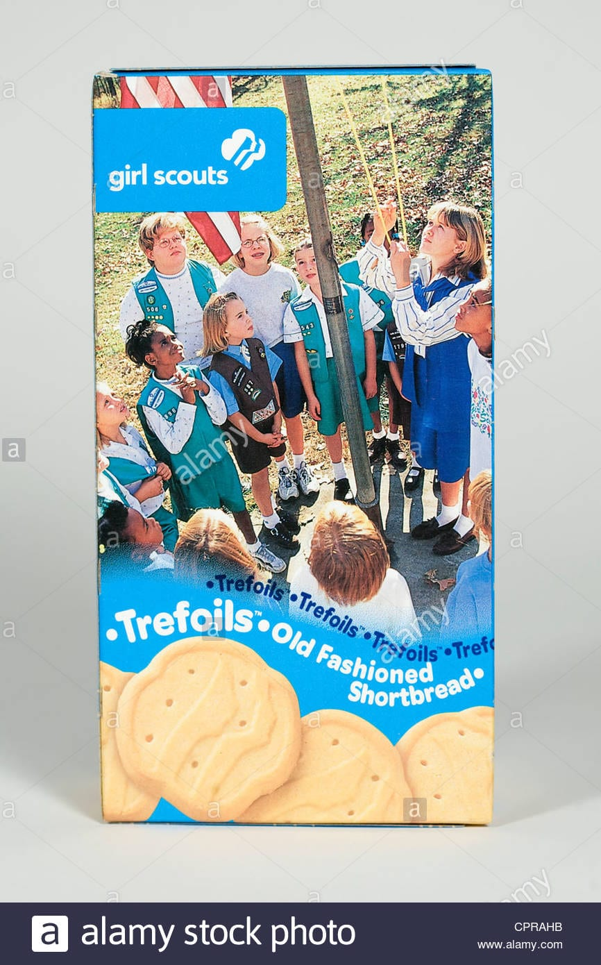 A Box Of Trefoils Girl Scout Cookies Stock Photo  48456391