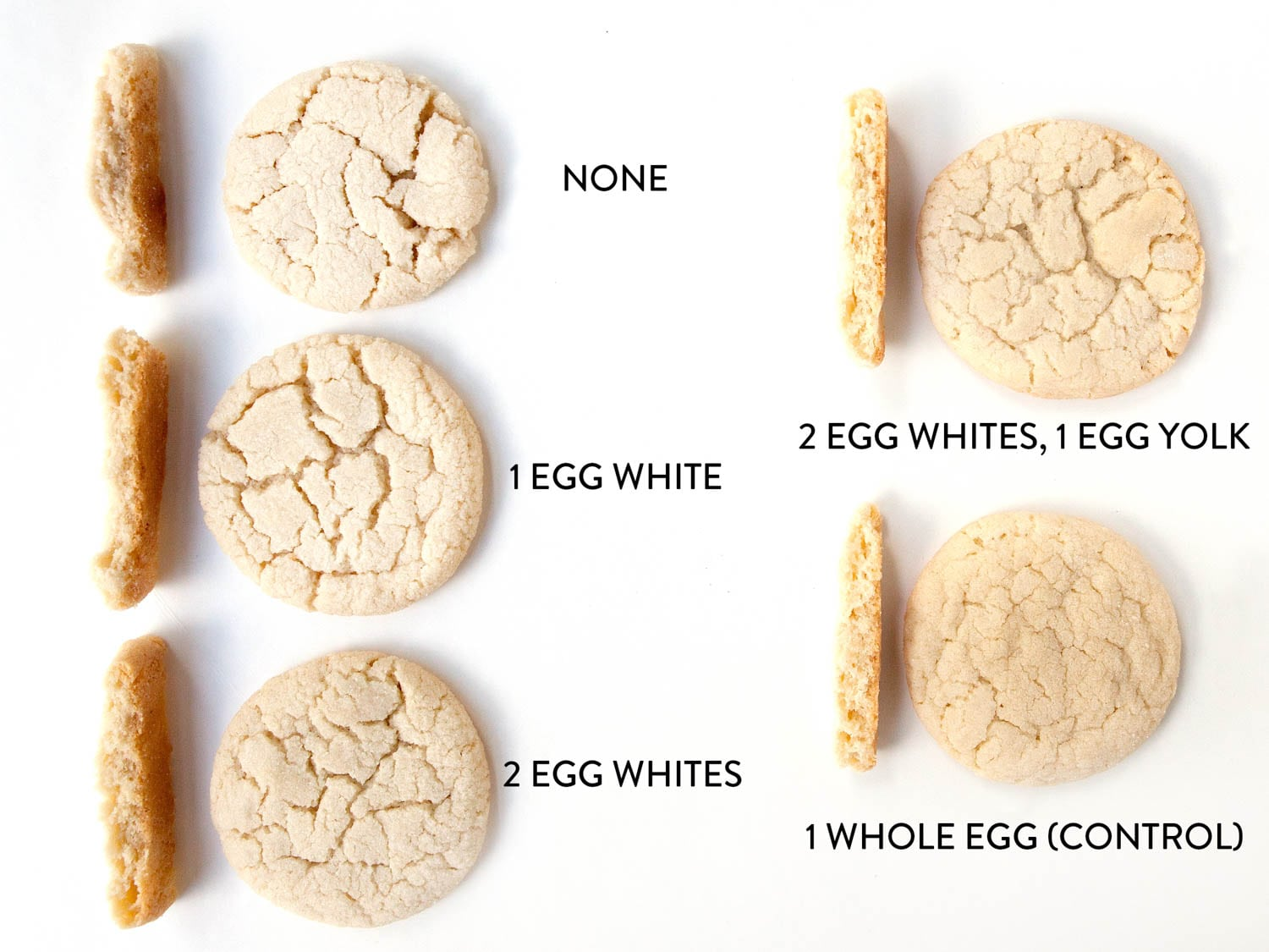 Cookie Science  How Do Eggs Affect My Cookies