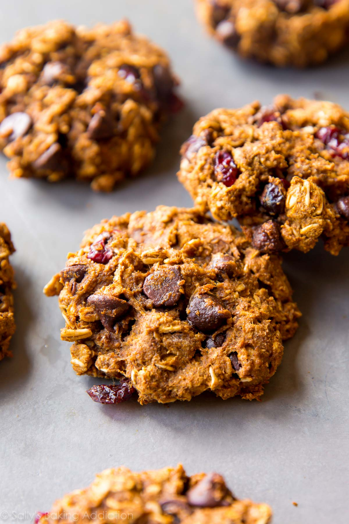 Healthy Pumpkin Chocolate Chip Oatmeal Cookies