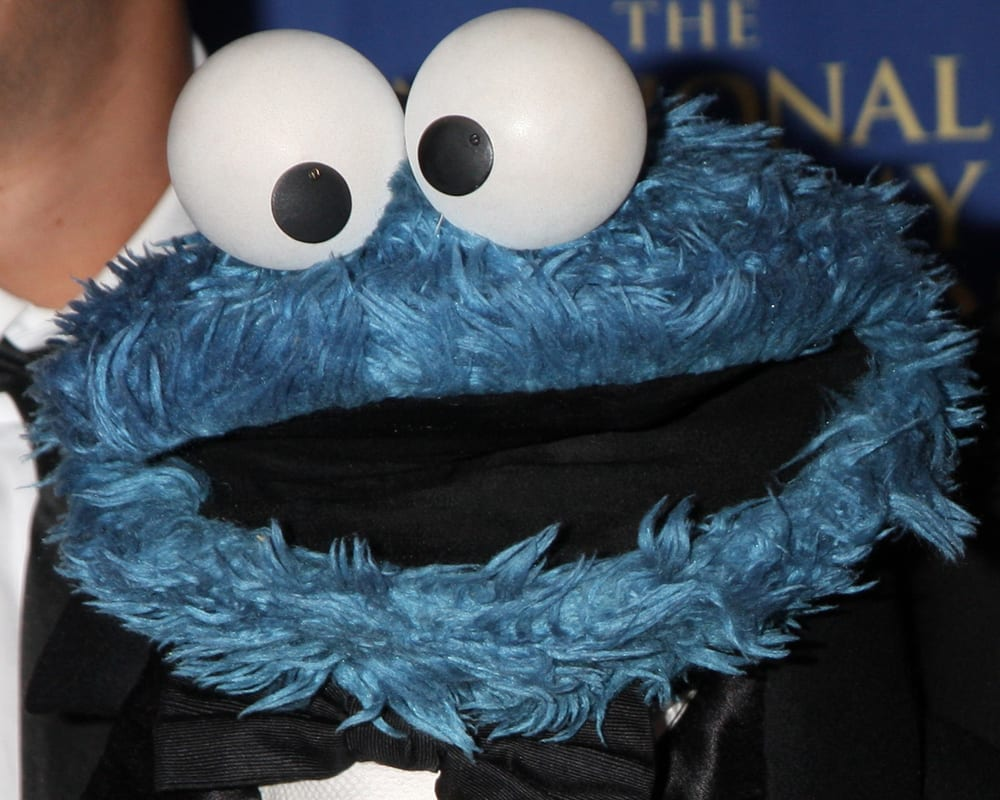 Man Arrested For Stuffing Cookie Monster Doll With Cocaine