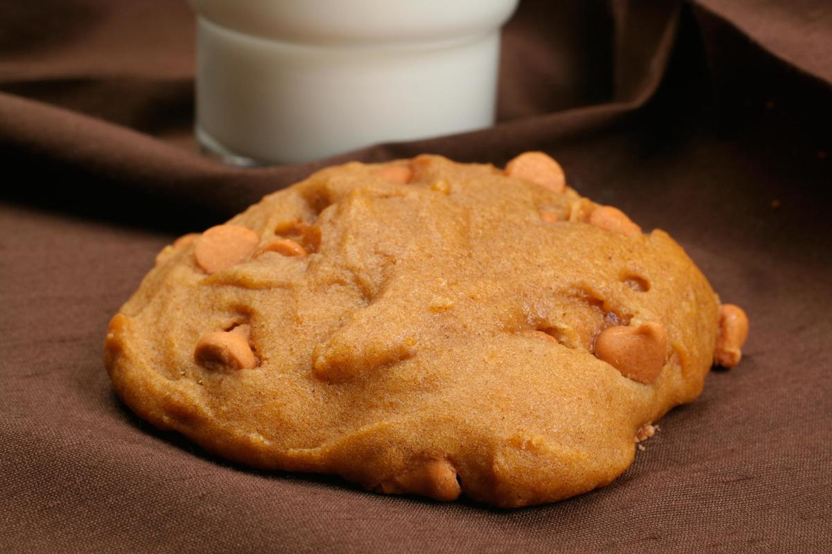 Pumpkin Cookies With Butterscotch Chips Recipe