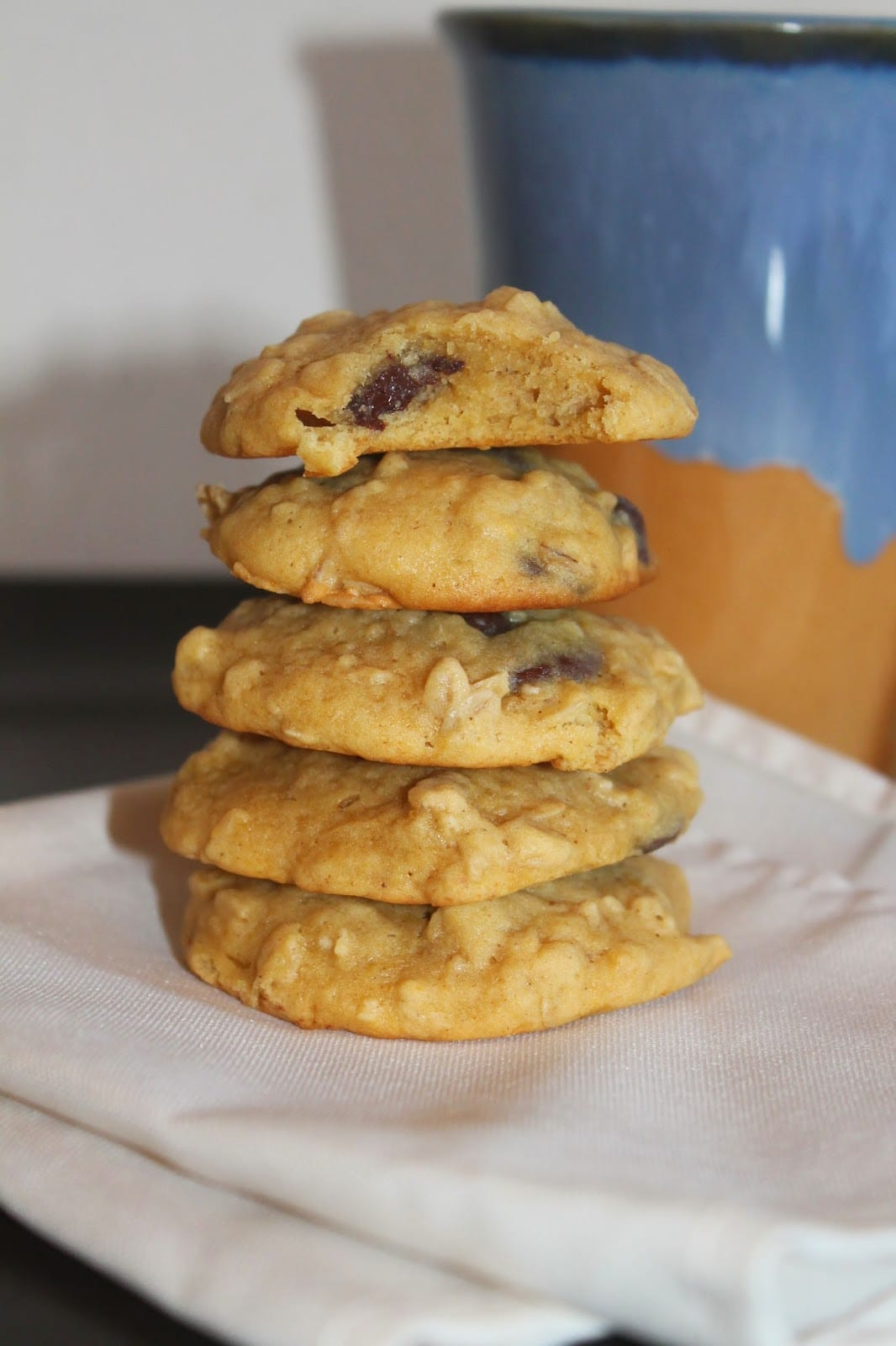 Savory Moments  Chocolate Chip Butternut Squash Oatmeal Cookies