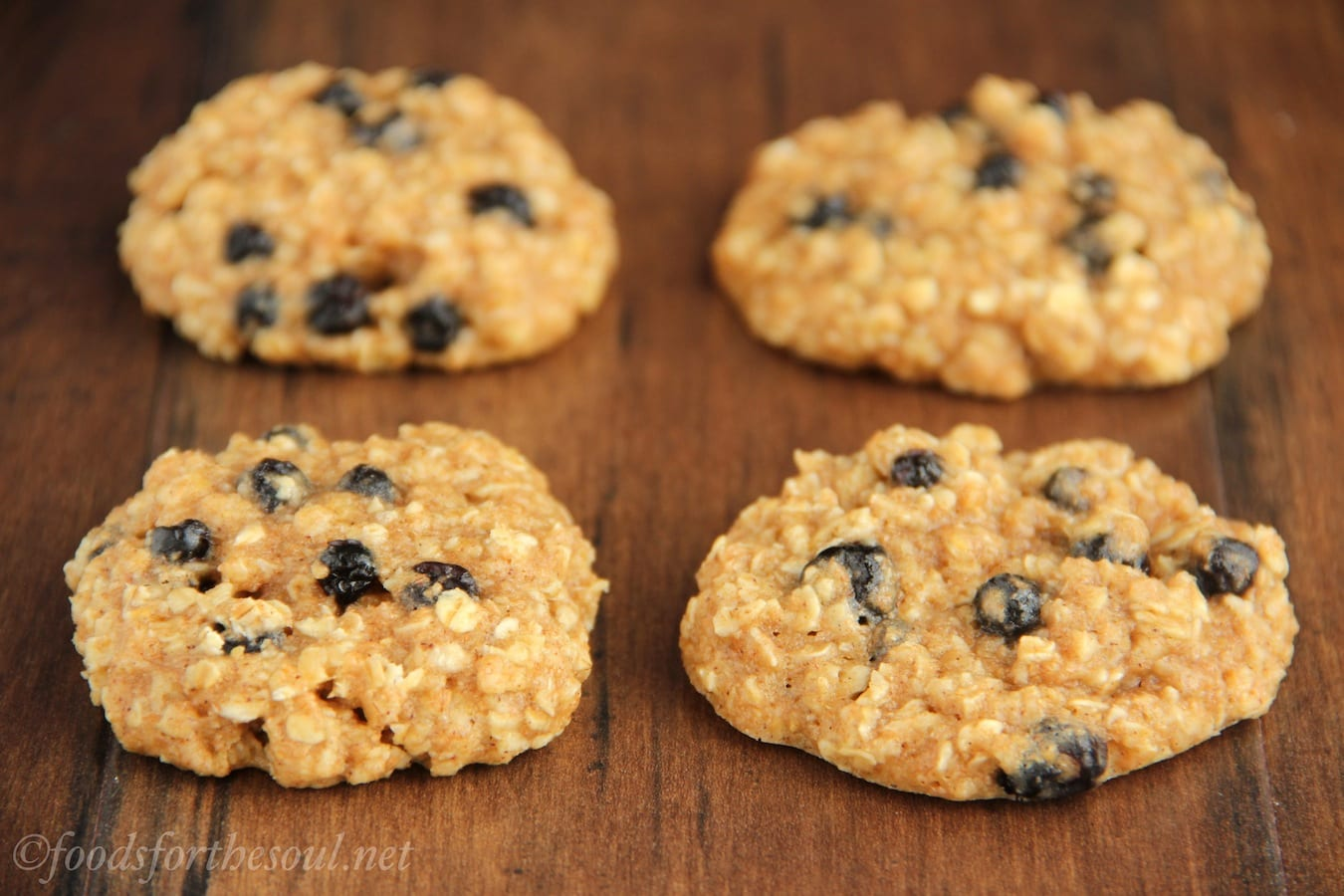 Blueberry Oatmeal Cookies
