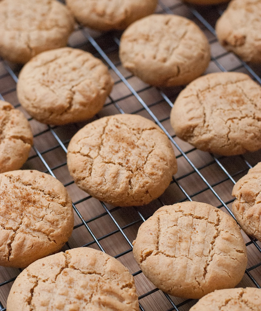 Peanut Butter Coconut Cookies Recipe — Dishmaps