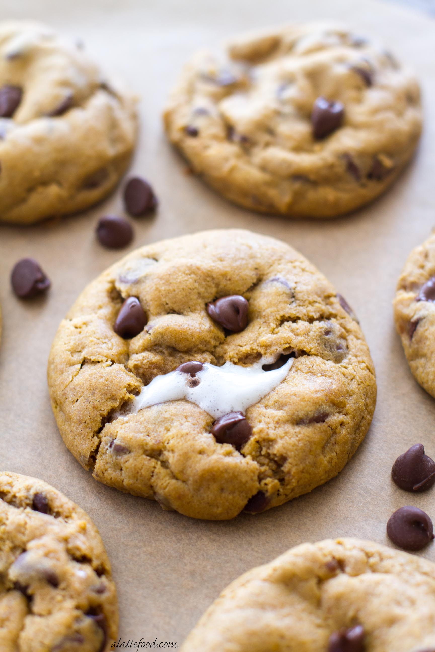 Inspirational Chewy Pumpkin Oatmeal Chocolate Chip Cookies A