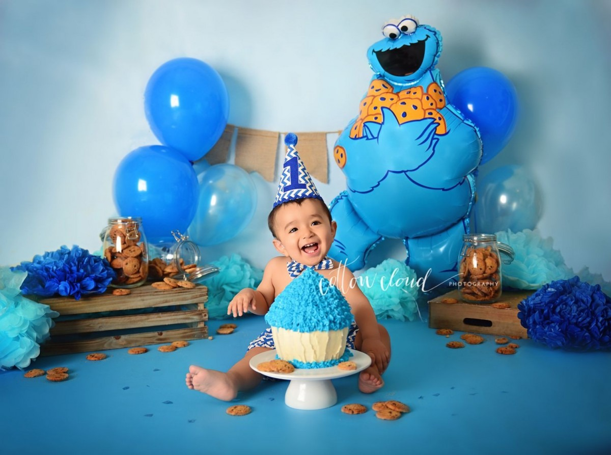 Cookie Monster Themed Smash Cake By Courtney Anderson
