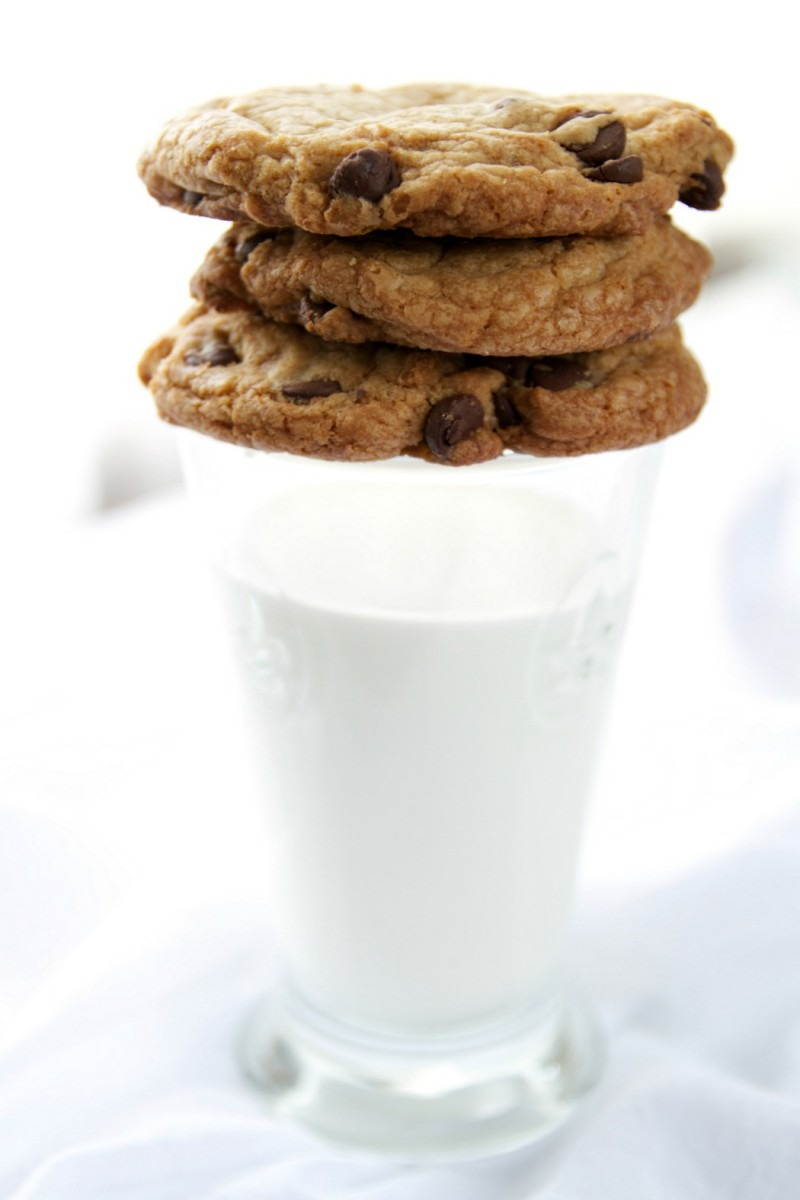 Alton Brown's Chewy Chocolate Chip Cookie Recipe » Just A Smidgen