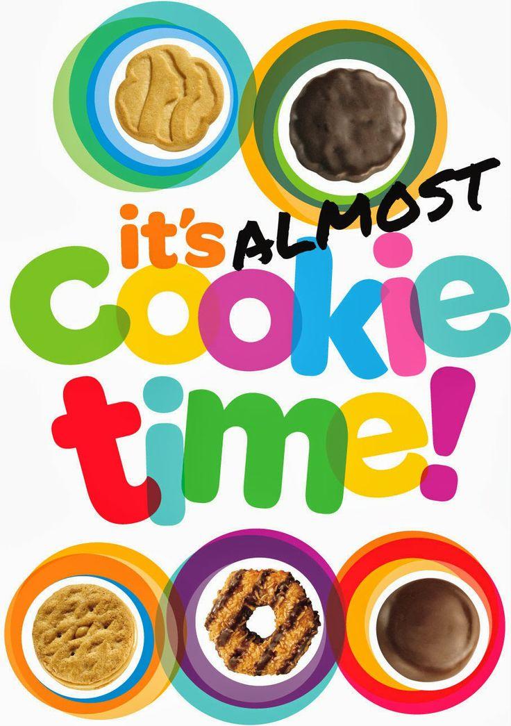 Air Jordan 2017 Girl Scout Cookies