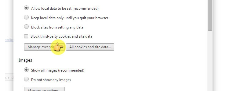 Clear Enable And Manage Cookies In Chrome Computer