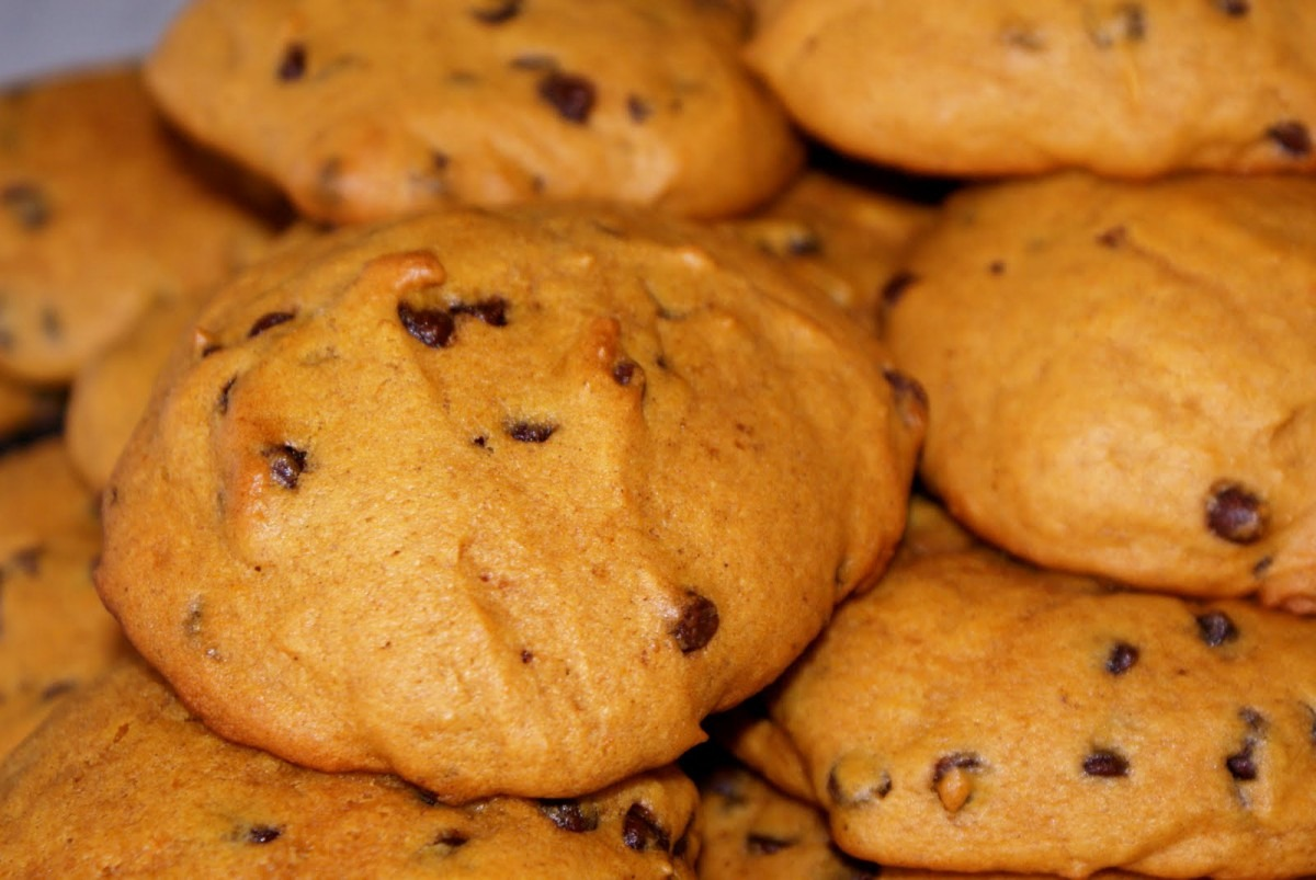 The Housewife's Recipes  The Best Pumpkin Chocolate Chip Cookies