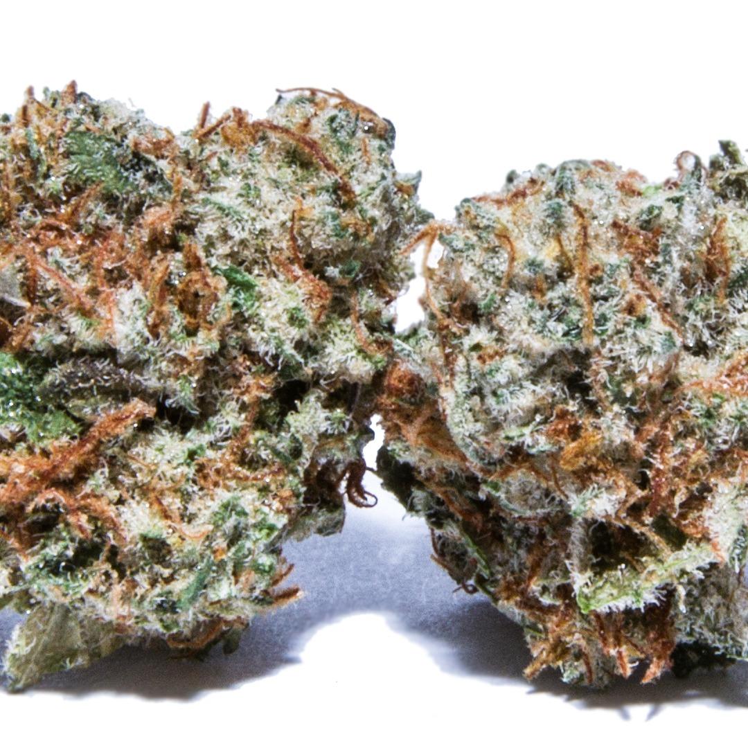 Fortune Cookies (hybrid) Cannabis Strain