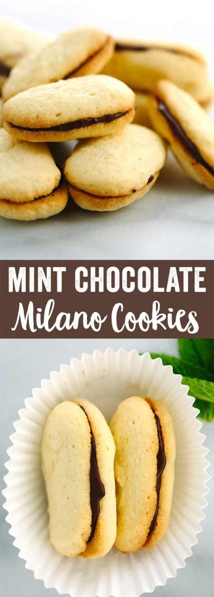 Homemade Mint Chocolate Milano Cookies