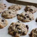 Sugar Free Oatmeal Raisin Cookies