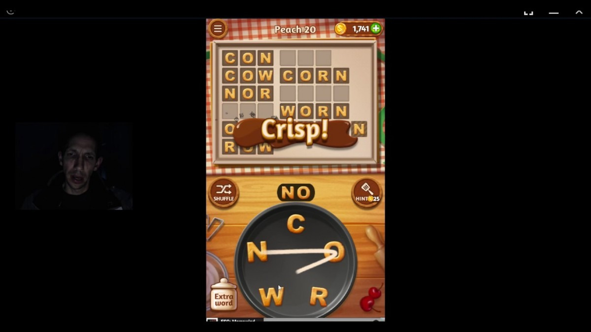 Word Cookies, Talented Chef, Peach Level 20