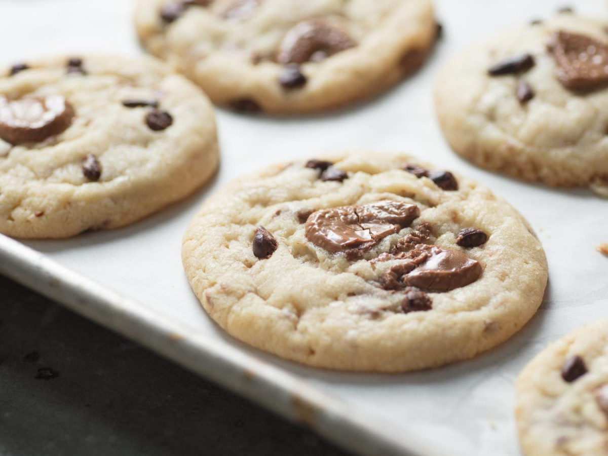 Cocoa Butter Cookies With Chocolate Chips Recipe