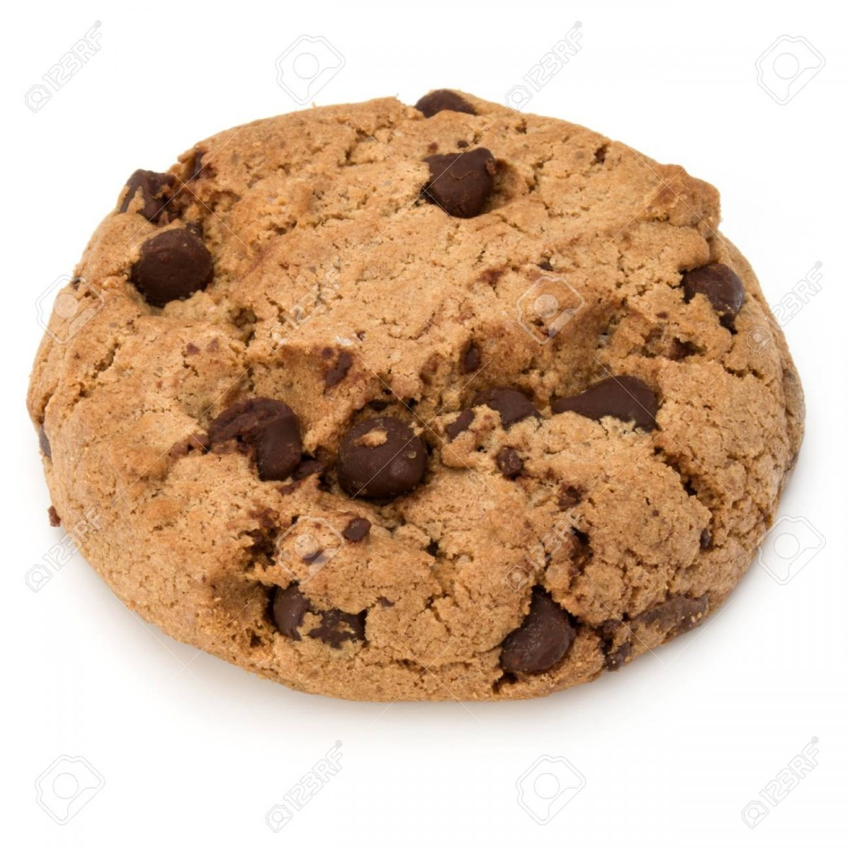 One Chocolate Chip Cookie Isolated On White Background  Sweet
