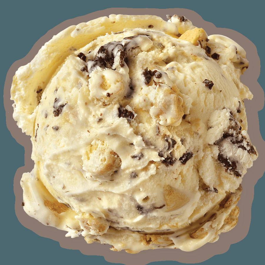 Chocolate Chip Cookie Dough • Homemade Brand Ice Cream