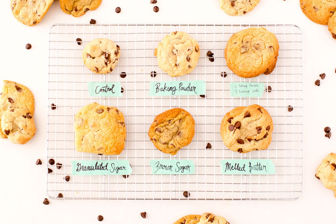 The Ultimate Chocolate Chip Cookie  Tested On Baking Rookies