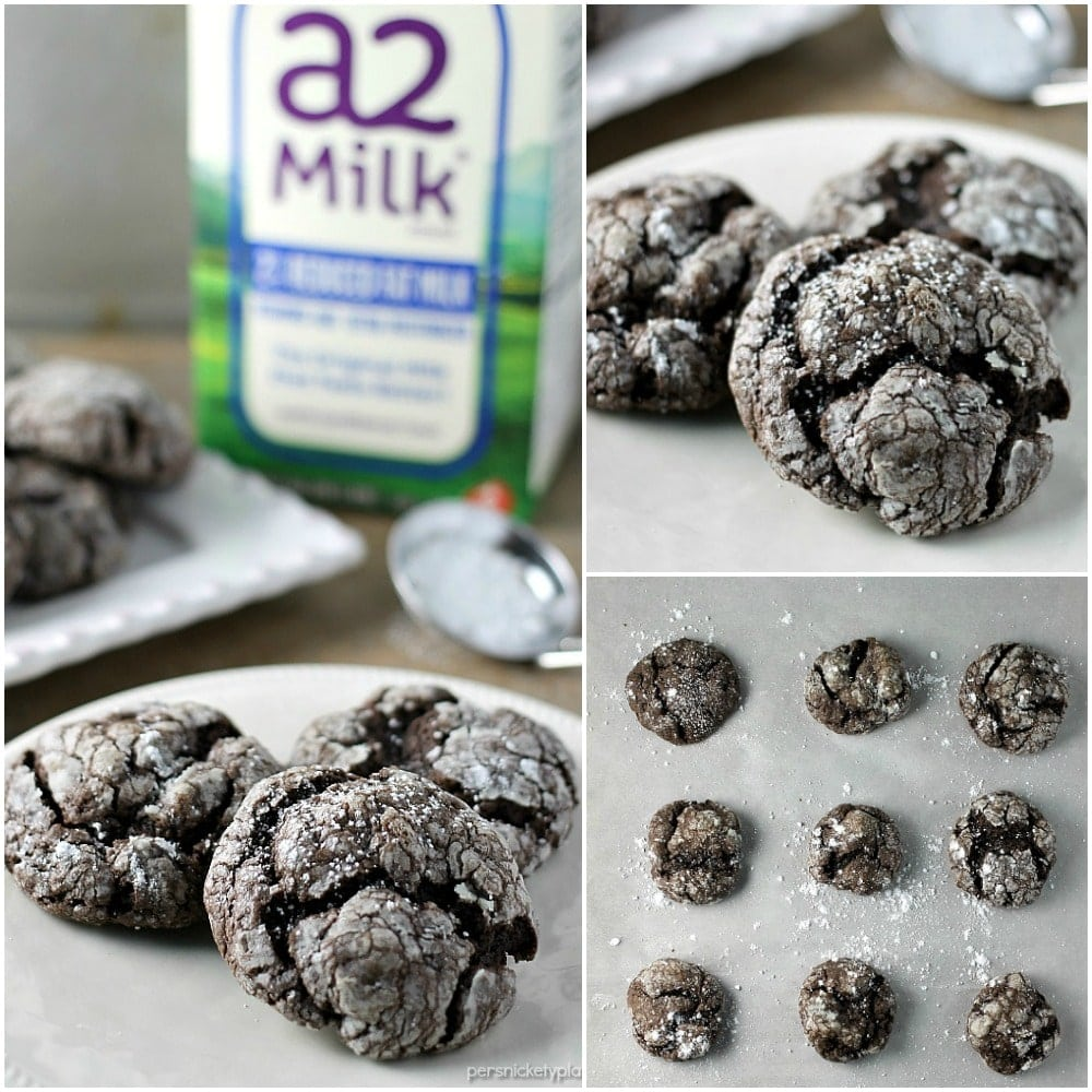 Chocolate Gooey Butter Cookies » Persnickety Plates