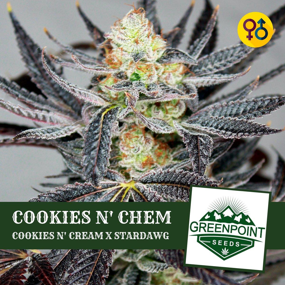 Cookies N Chem