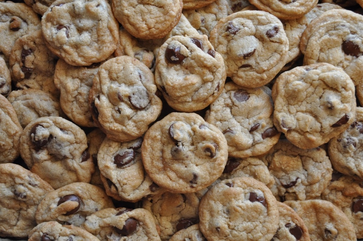 High Altitude Chocolate Chip Cookies – Suz Daily