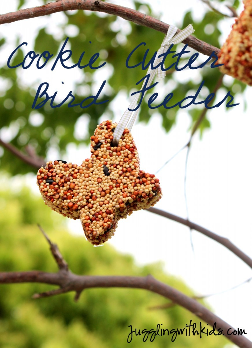 Cookie Cutter Bird Feeder – Juggling With Kids