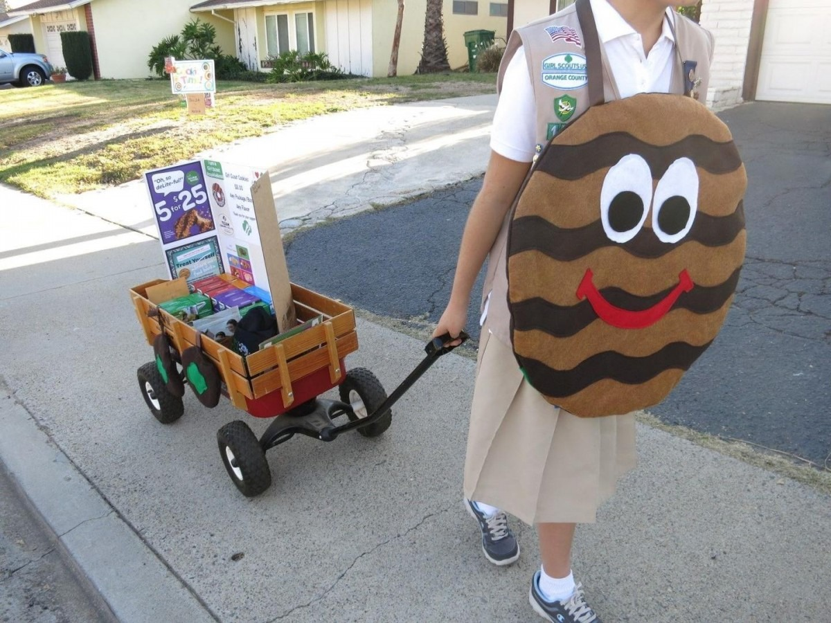 Girl Scout Cookie Costume