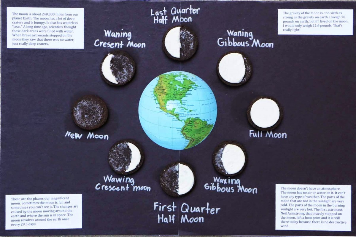 Carrot Top X 3  Moon Phases With Oreo Cookies!