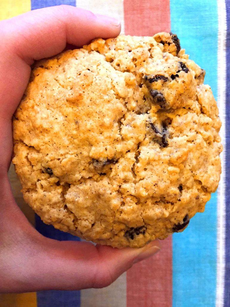 Easy Soft & Chewy Oatmeal Raisin Cookies Recipe – Melanie Cooks