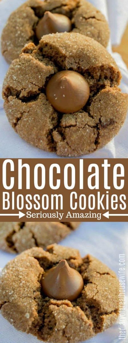 Chocolate Blossom Cookies • The Diary Of A Real Housewife
