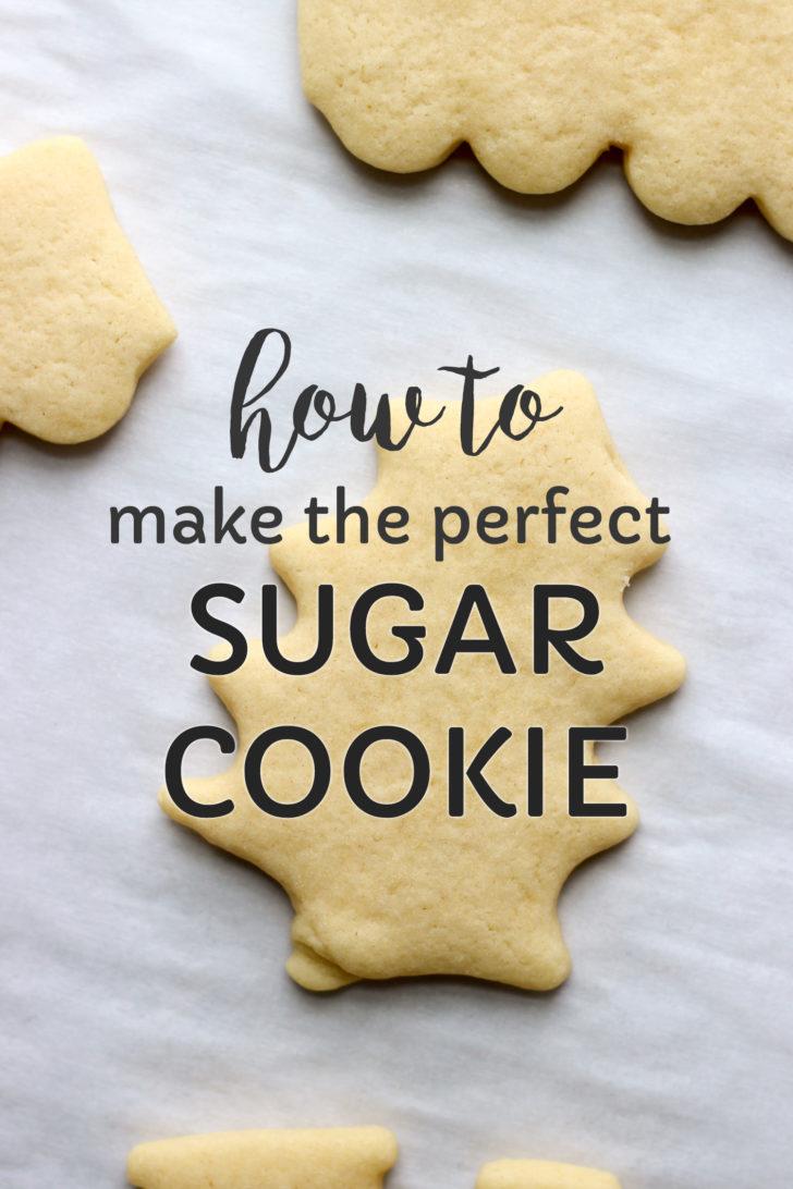 Easy Sugar Cookies Recipe  The Best Sugar Cookies