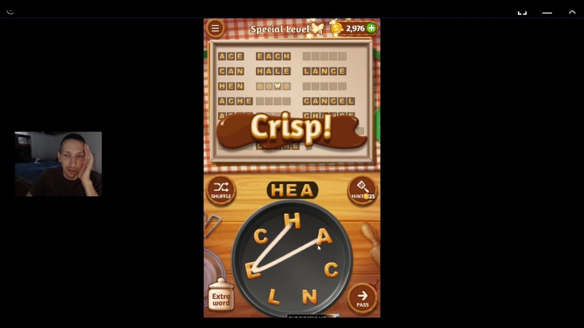 Word Cookies, Talented Chef, Cherry (updated) Special Level Solved