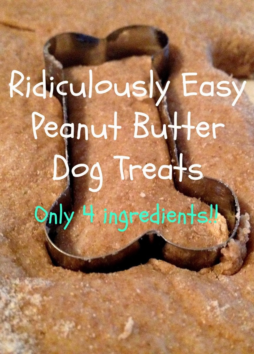 The Simple Life  Ridiculously Easy Peanut Butter Dog Treats