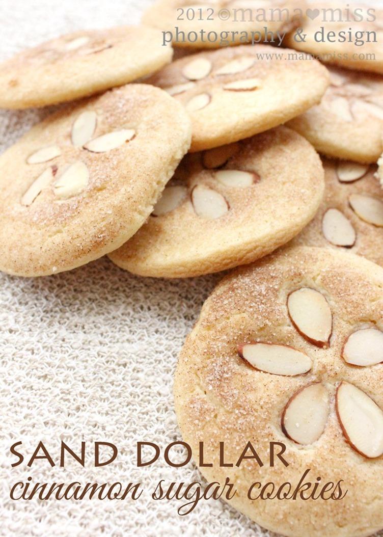 Sand Dollar Cinnamon Sugar Cookies