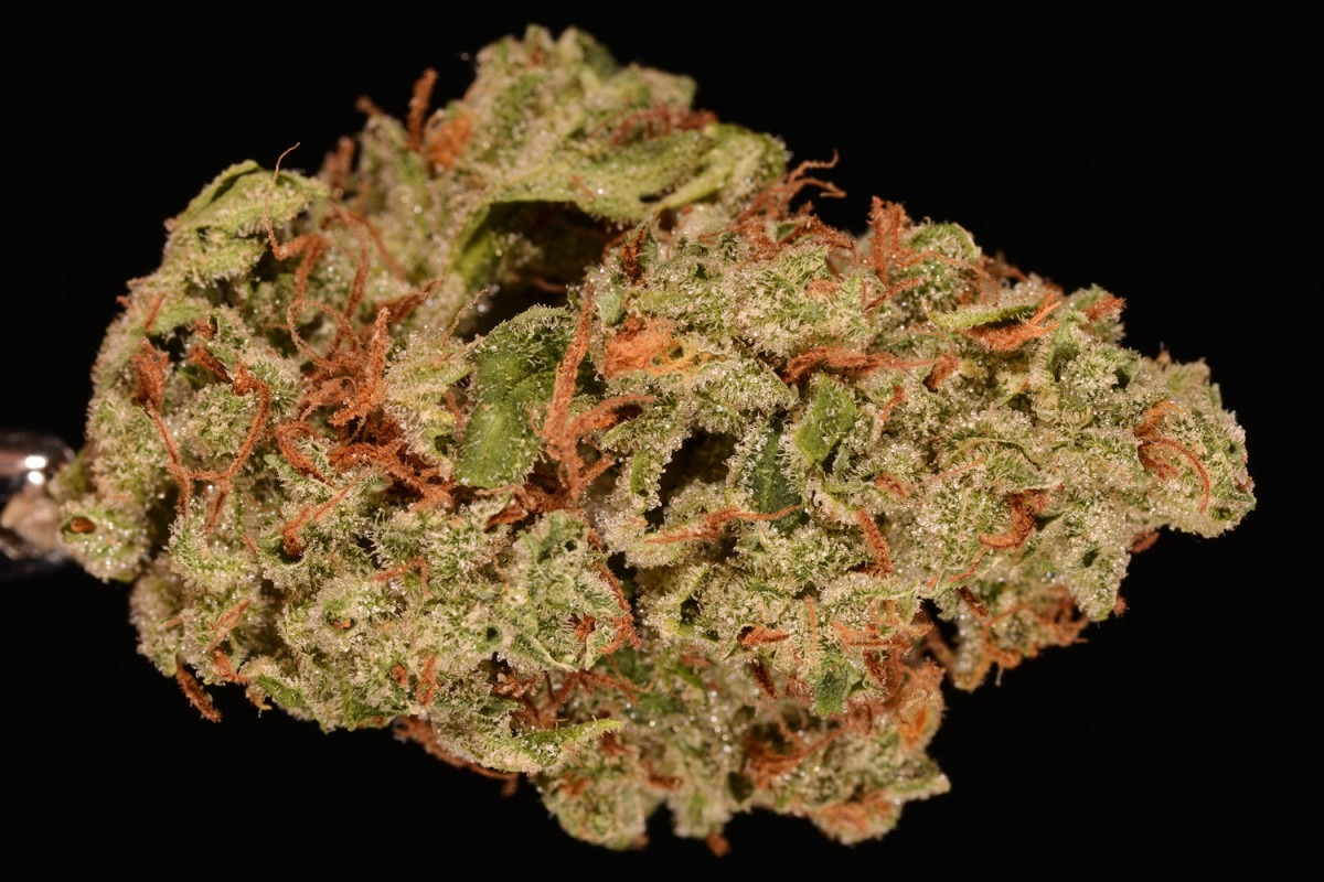 Best Tasting Weed  10 Mouth