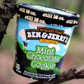 Ben And Jerry's Mint Chocolate Cookie