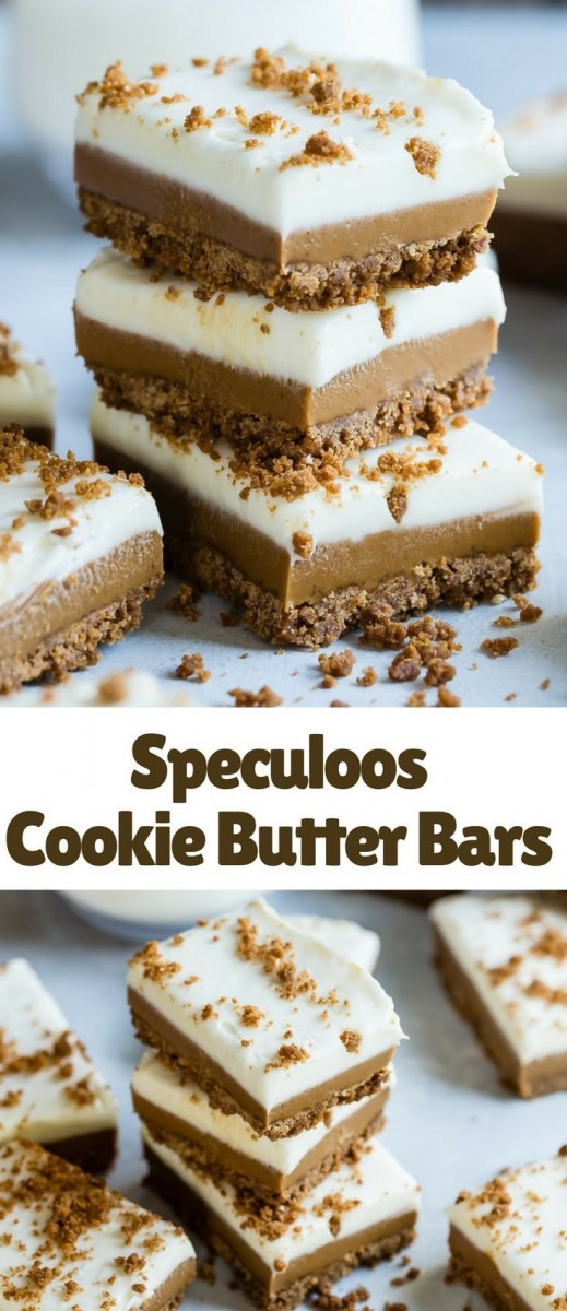 Have You Seen The New Cookie Butter Bars In Starbucks  They Taste