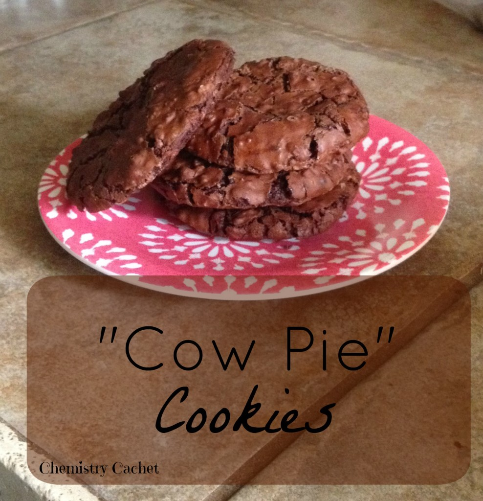 Cow Pie Cookies (heavenly Chocolate Cookies!)