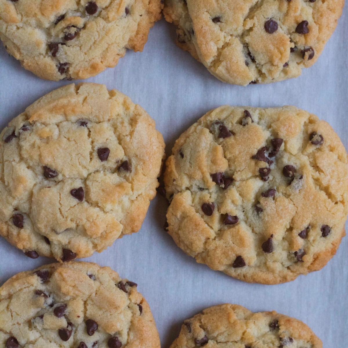 Chocolate Chip Sugar Cookies • Hip Foodie Mom